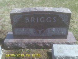 Walter O Briggs