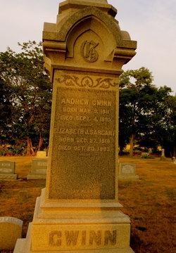 Andrew Jackson Hogan