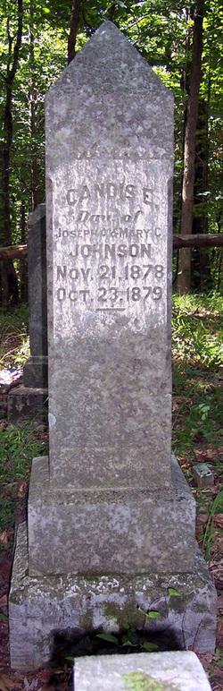 Candis E Johnson