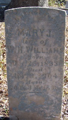 Mary J Williams