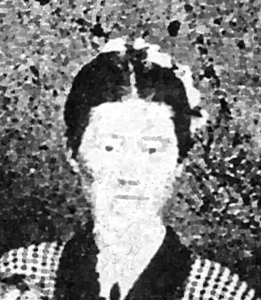 Louisa A Taylor