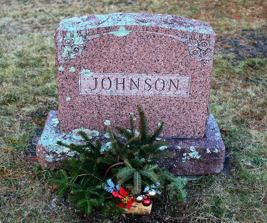Charles A Johnson