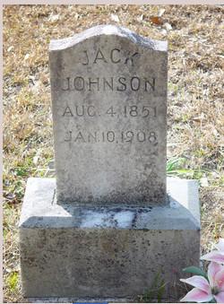 William Jackson Johnson