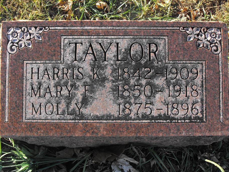 Harris K Taylor