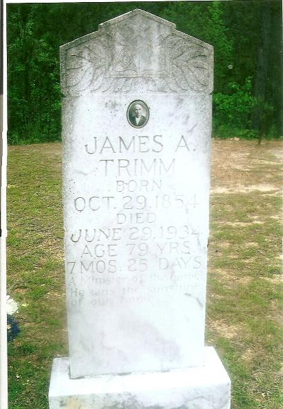 James A Trimm
