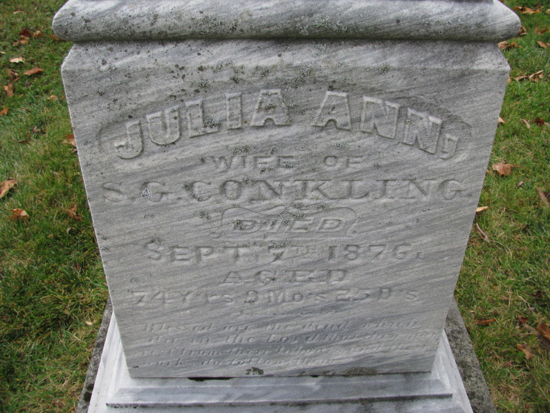 Julia Ann Corwin