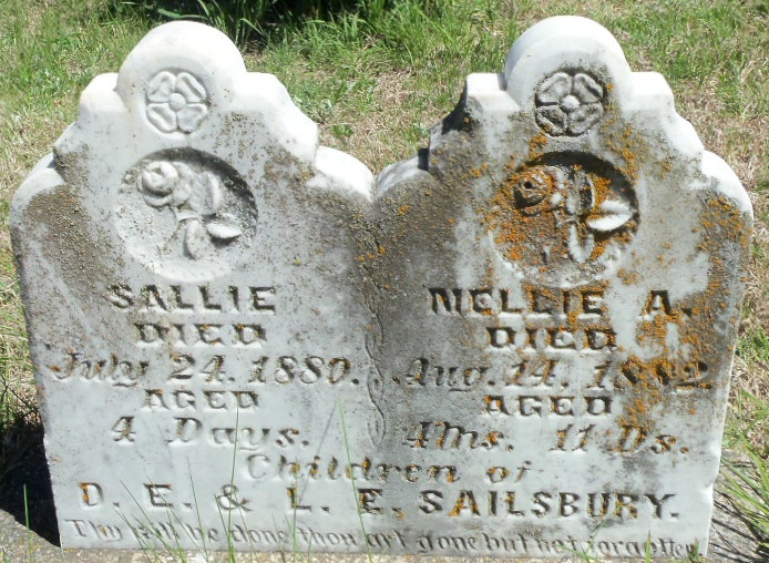 Sallie Salisbury