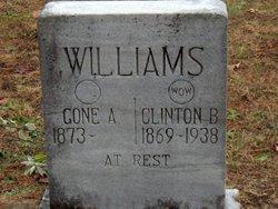 Clinton B Williams