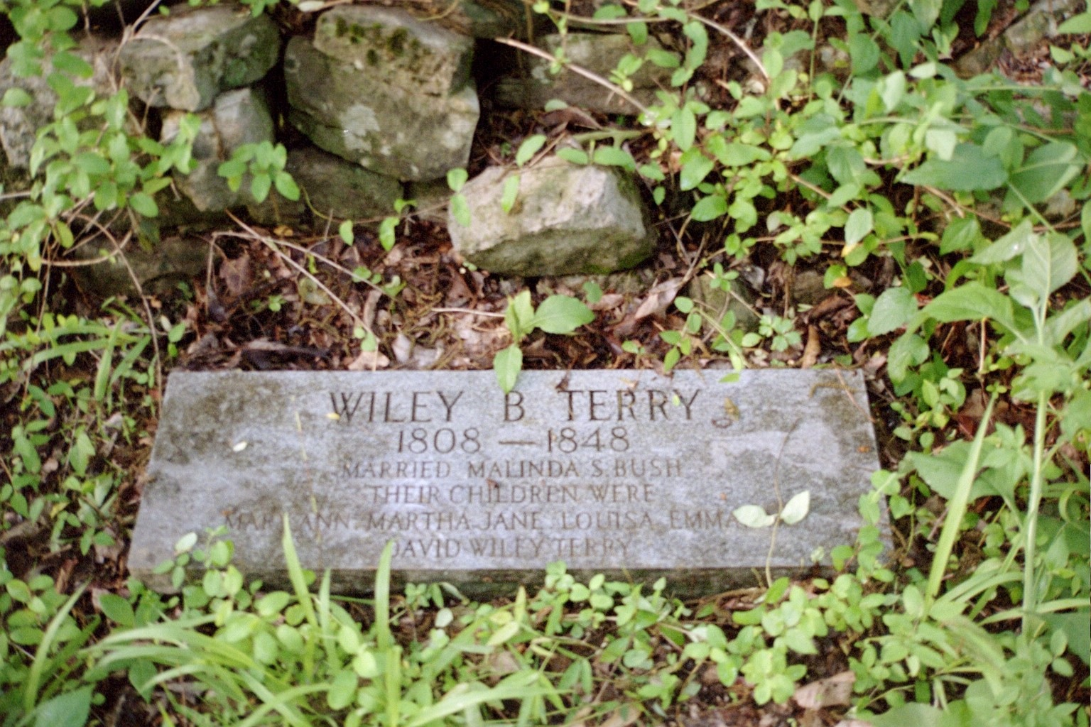 Wiley B Terry