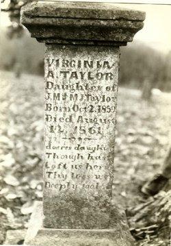Virginia Amarilla Taylor