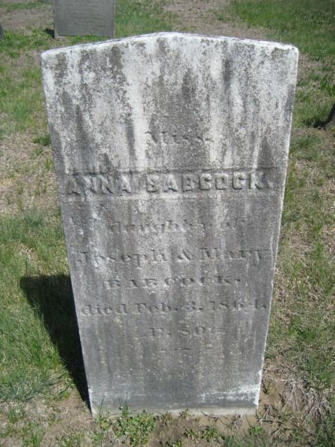 Anna Babcock