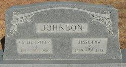 Jesse Dow Johnson