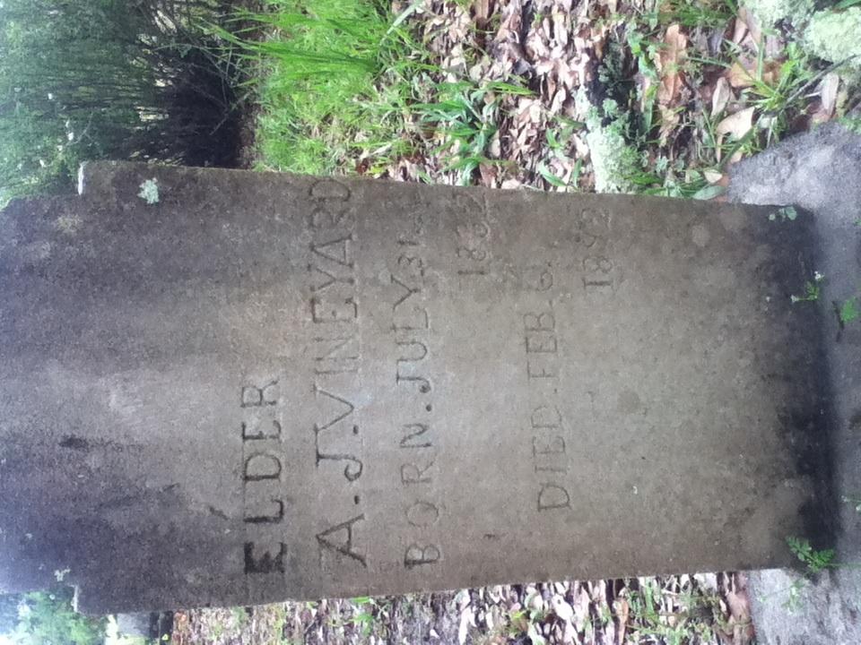 Andrew Jackson Vineyard
