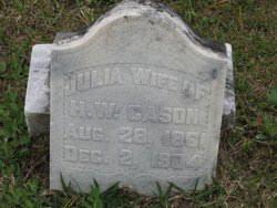 Julia A Taylor