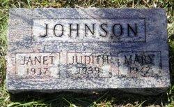 Janet A. Johnson