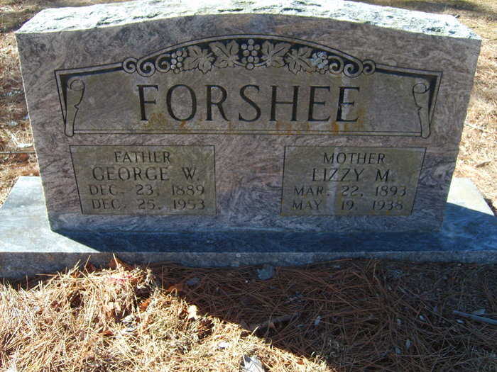 George Washington Forshee