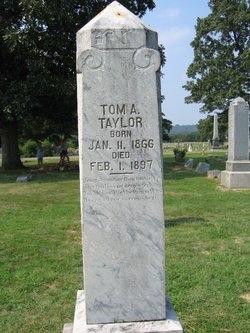 Thomas A Taylor