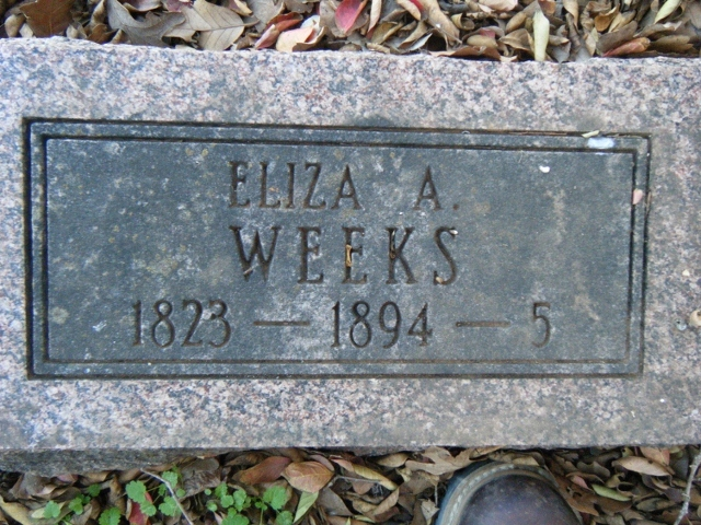 Elizabeth Ann Whitehouse