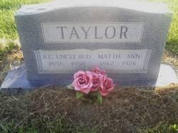 Alexander Carter Taylor