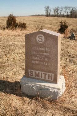 William Martin Smith