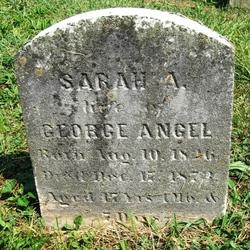 Sarah A Johnson