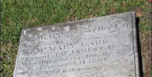 Mary Calhoun Carr