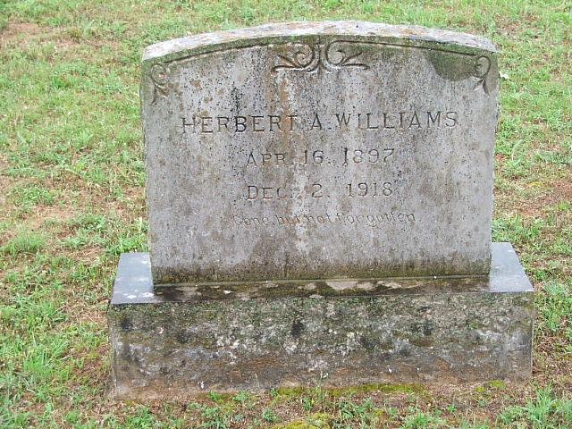 Herbert A Williams