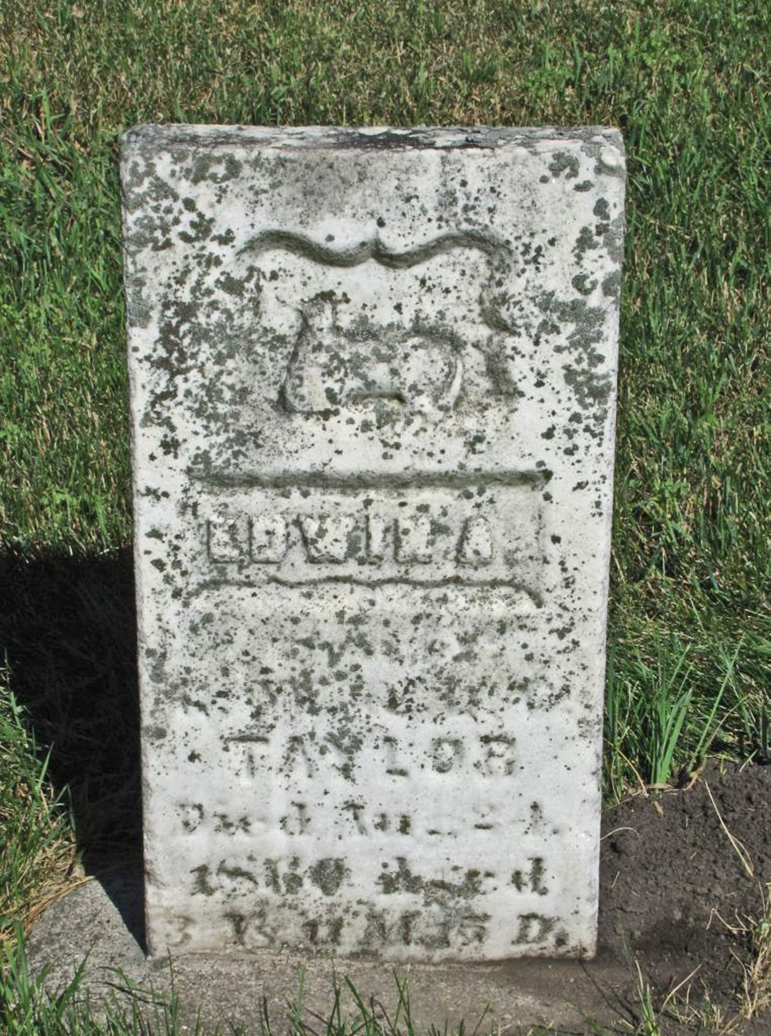 Edwin A Taylor