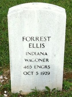 Andrew Forrest Ellis
