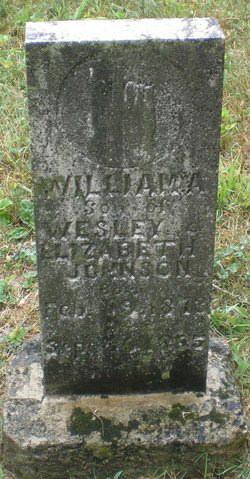 William A Johnson