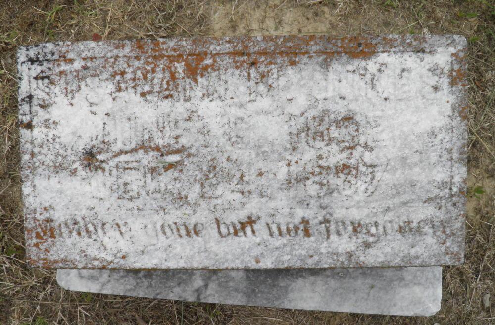 Susannah M Elizabeth Jones Johns