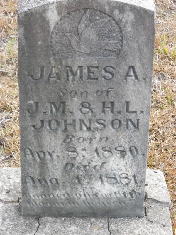 James A Johnson