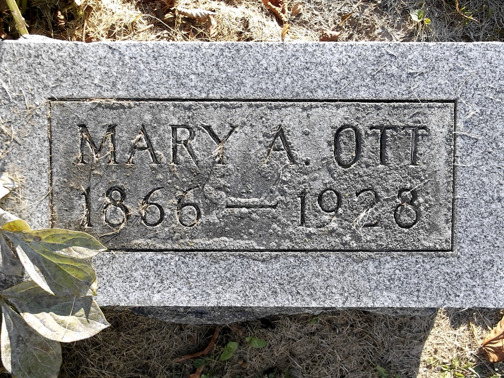 Mary Ann Hilsheimer