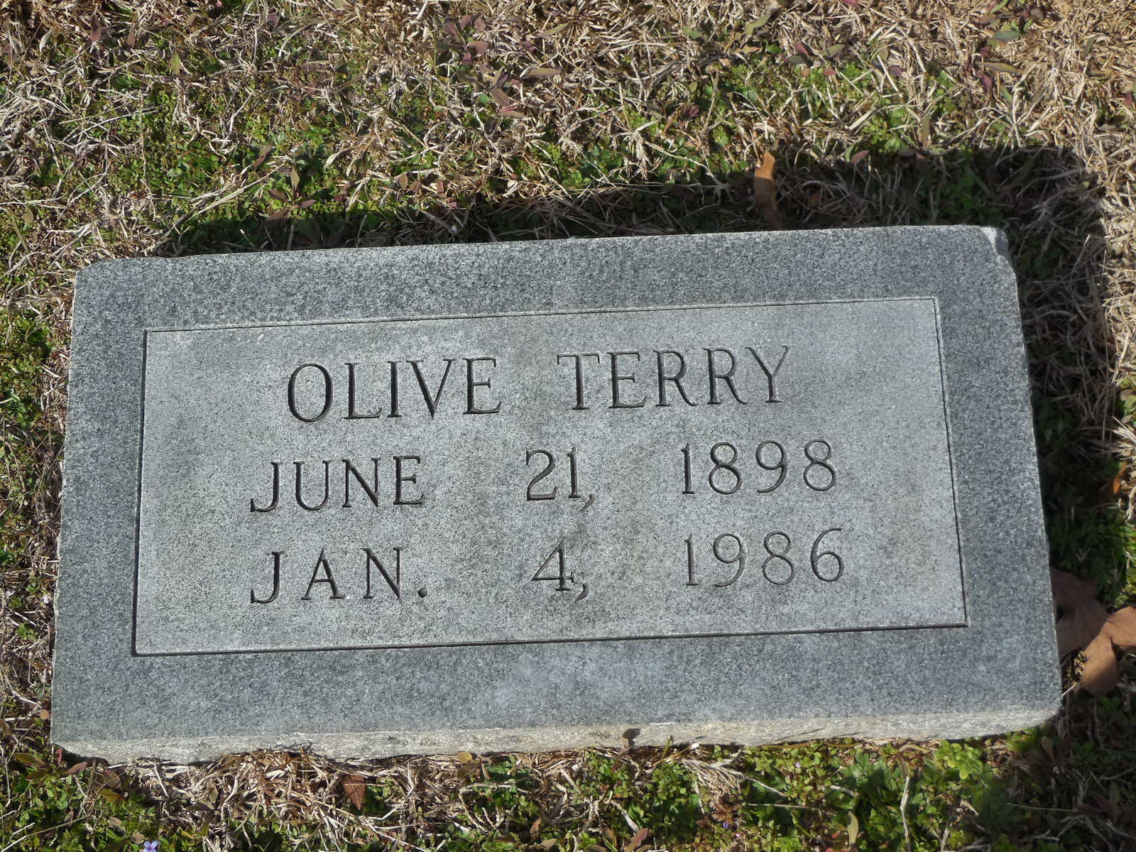 Olive Terry