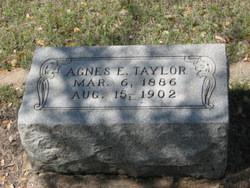 Agnes E Taylor