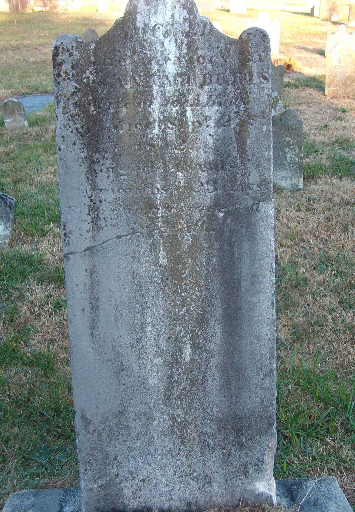 Elizabeth Susannah Cline