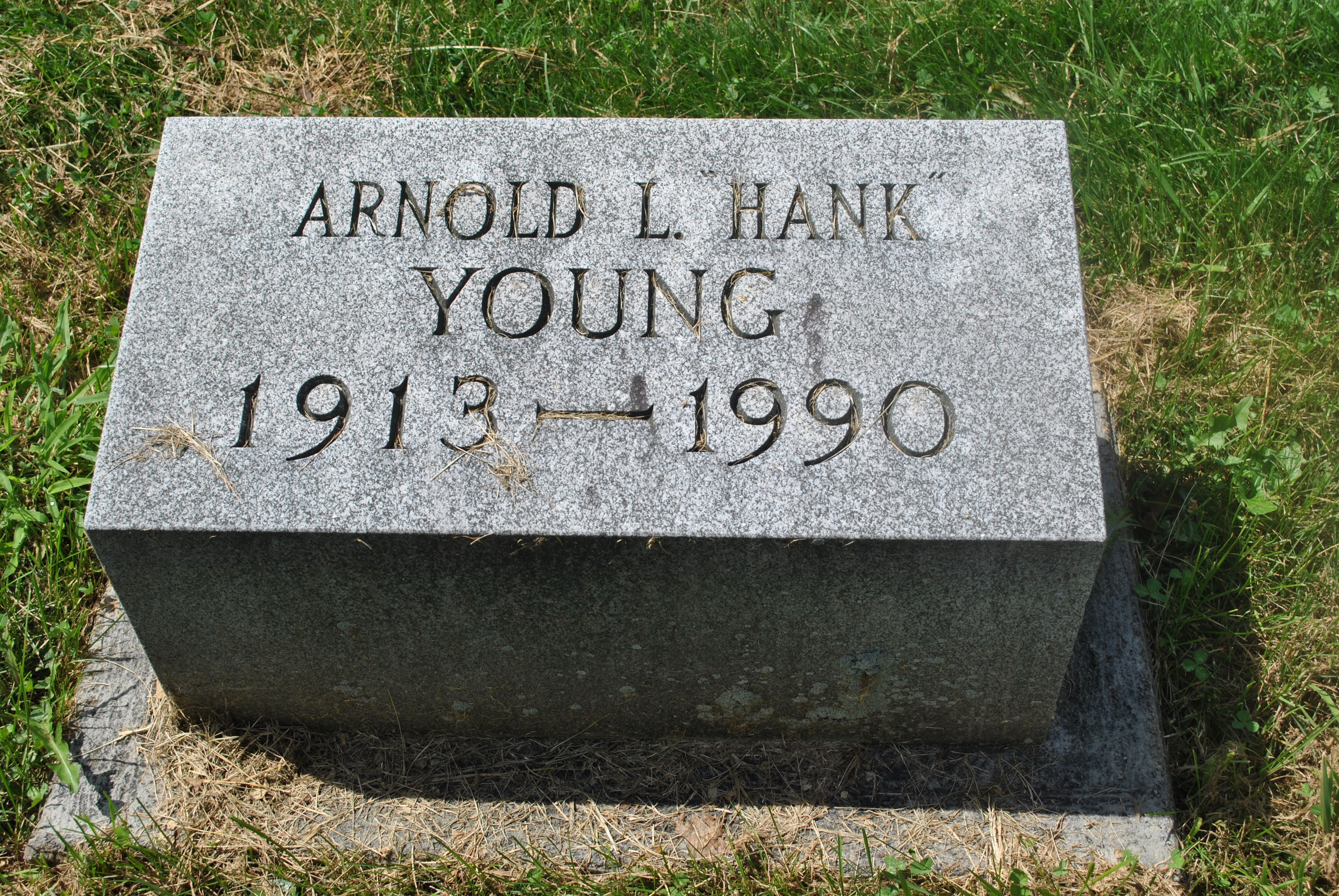 Arnold L Young
