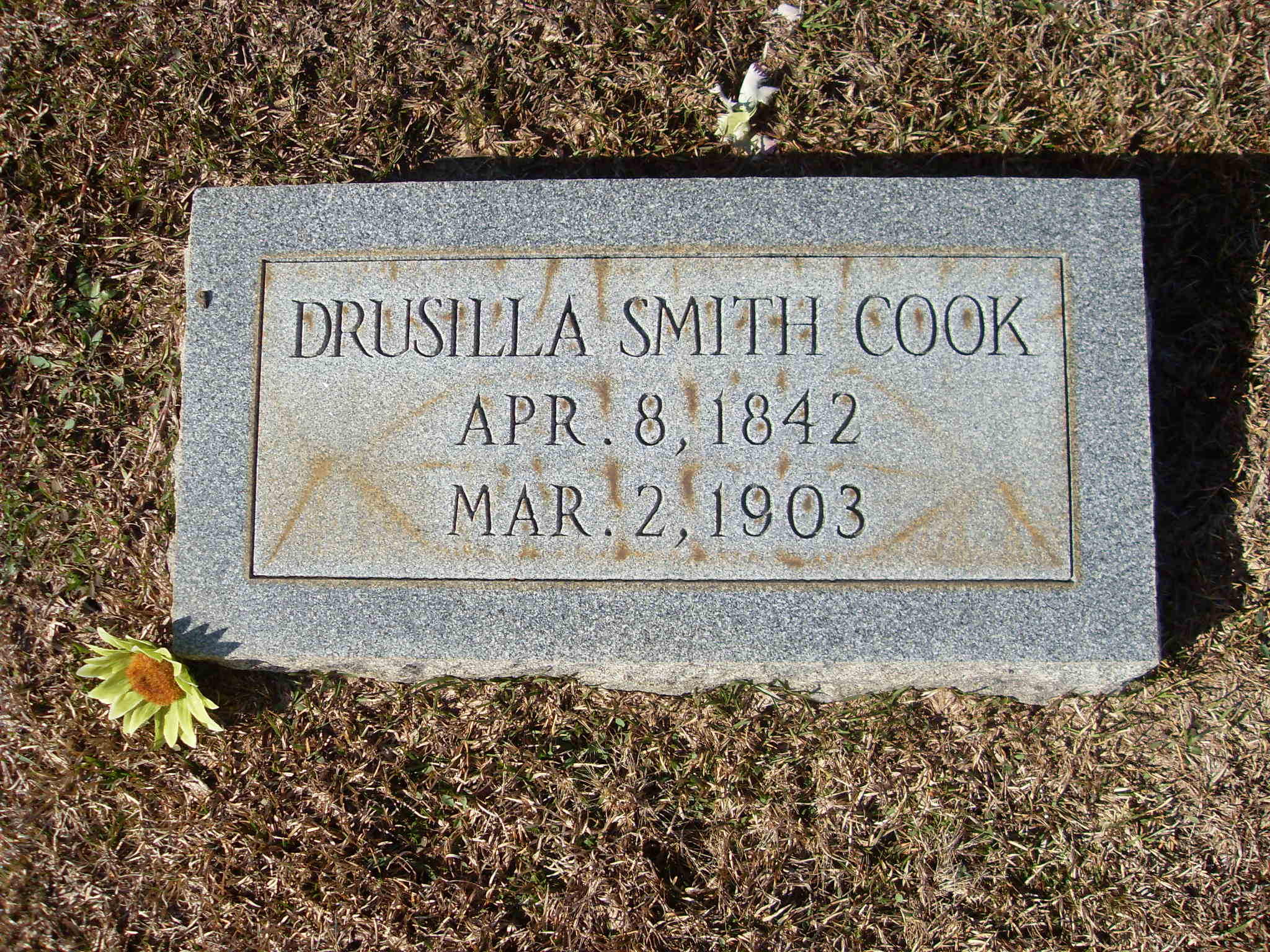 Drusilla P Smith