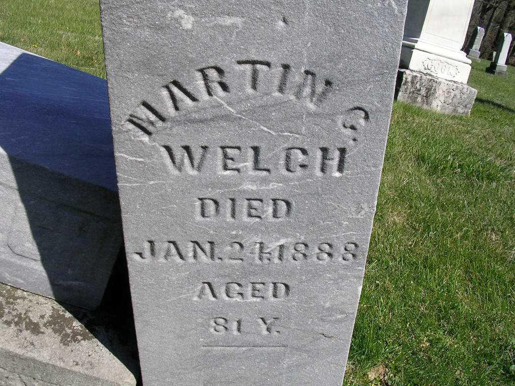 Martin C Welch