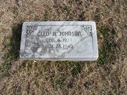 Cleo A Johnson