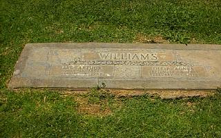 Lee Arthur Williams