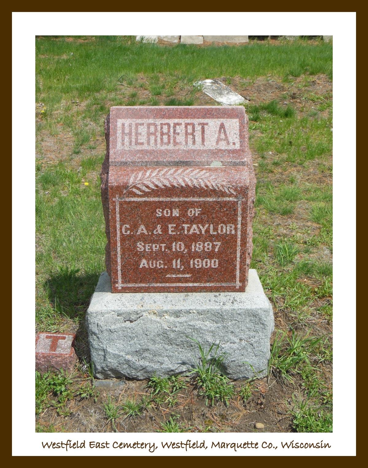 Herbert A Taylor