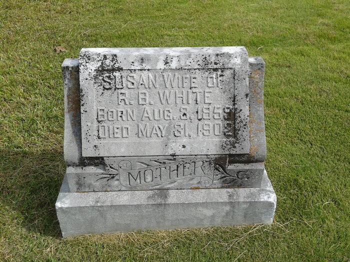 Susan A Bradshaw