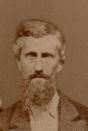 William M Wilcox