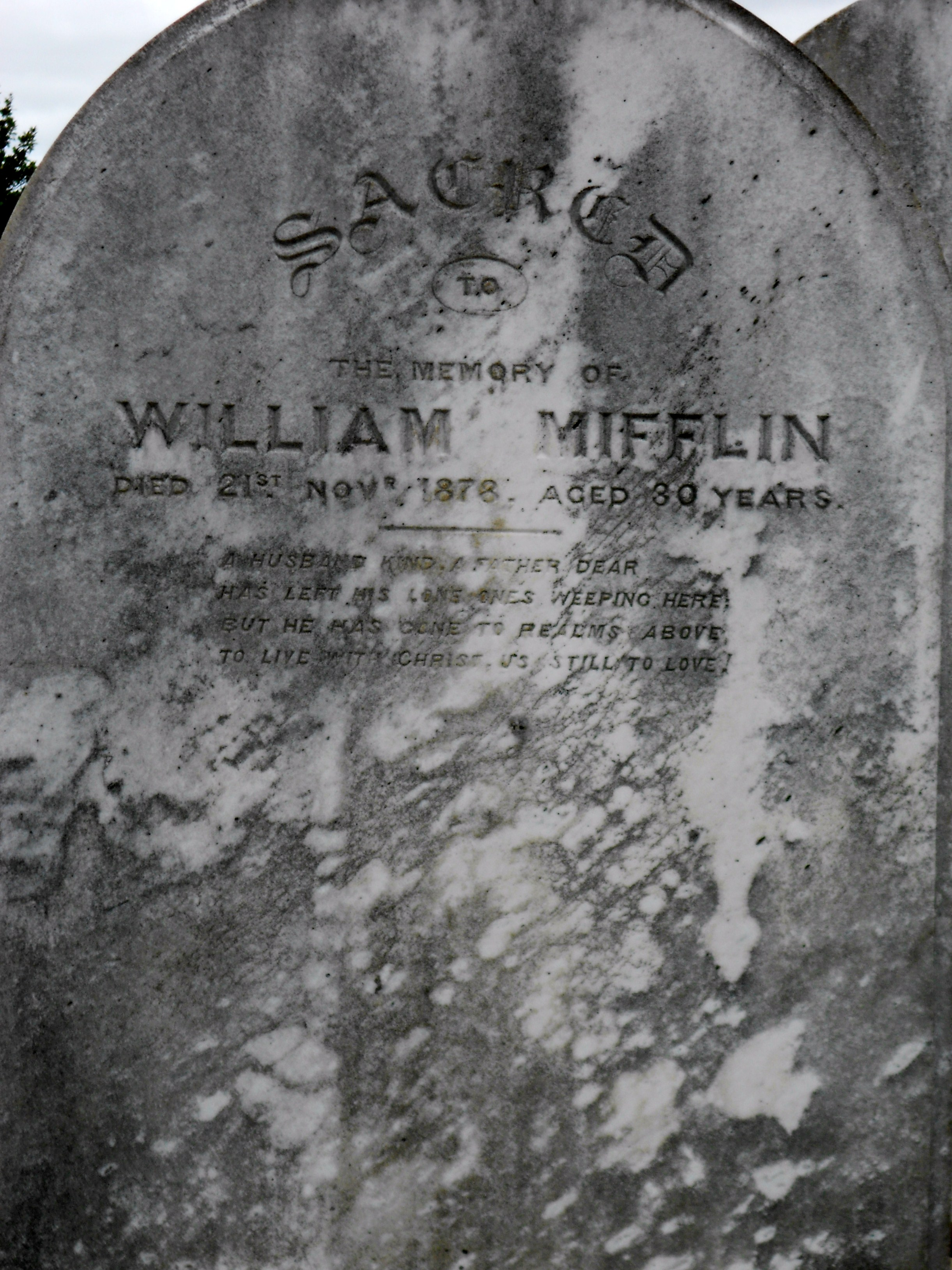 William Sydney Mifflin