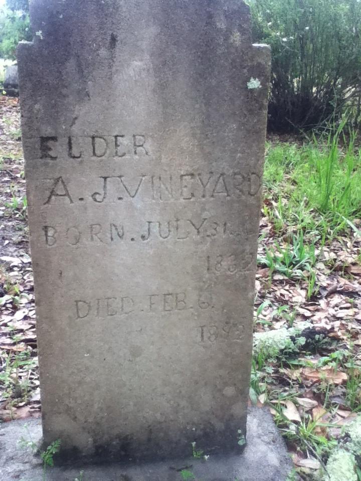 Andrew Jackson Vinyard