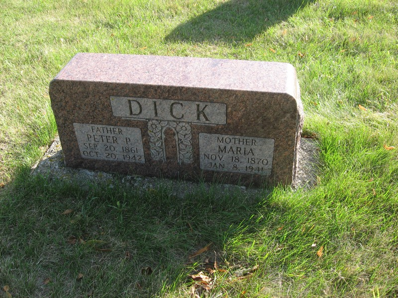 Peter P Dick
